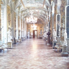 De Galleria degli Specchi is de enige gang met ramen aan weerszijden en toont niet alleen een prachtig plafond, maar ook een zeer mooie collectie beelden.